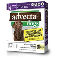 Print a coupon for $1 off any Advecta Product
