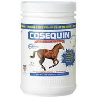 Print a coupon for $7.50 off one Cosequin Equine Joint Health Supplement