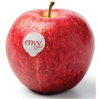Print a coupon for $0.50 off Envy Apples