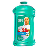 Print a coupon for $0.75 off any Mr. Clean All Purpose Cleaner