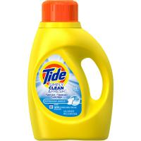Save $3 on one bottle of Tide Detergent and one pouch of Tide Boost